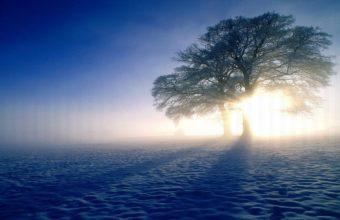 Plandscapes Nature Winter Snow Sun 4K Ultra HD Wallpaper 3840x2160 340x220