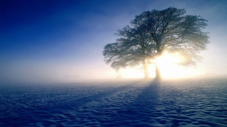 Plandscapes Nature Winter Snow Sun 4K Ultra HD Wallpaper 3840x2160 768x432