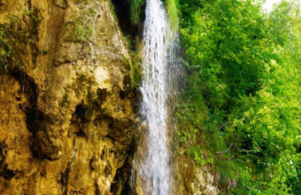 River Fall iPhone 7 Wallpaper 750x1334 340x220