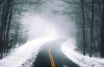 Road iPhone 7 Wallpaper 750x1334 340x220
