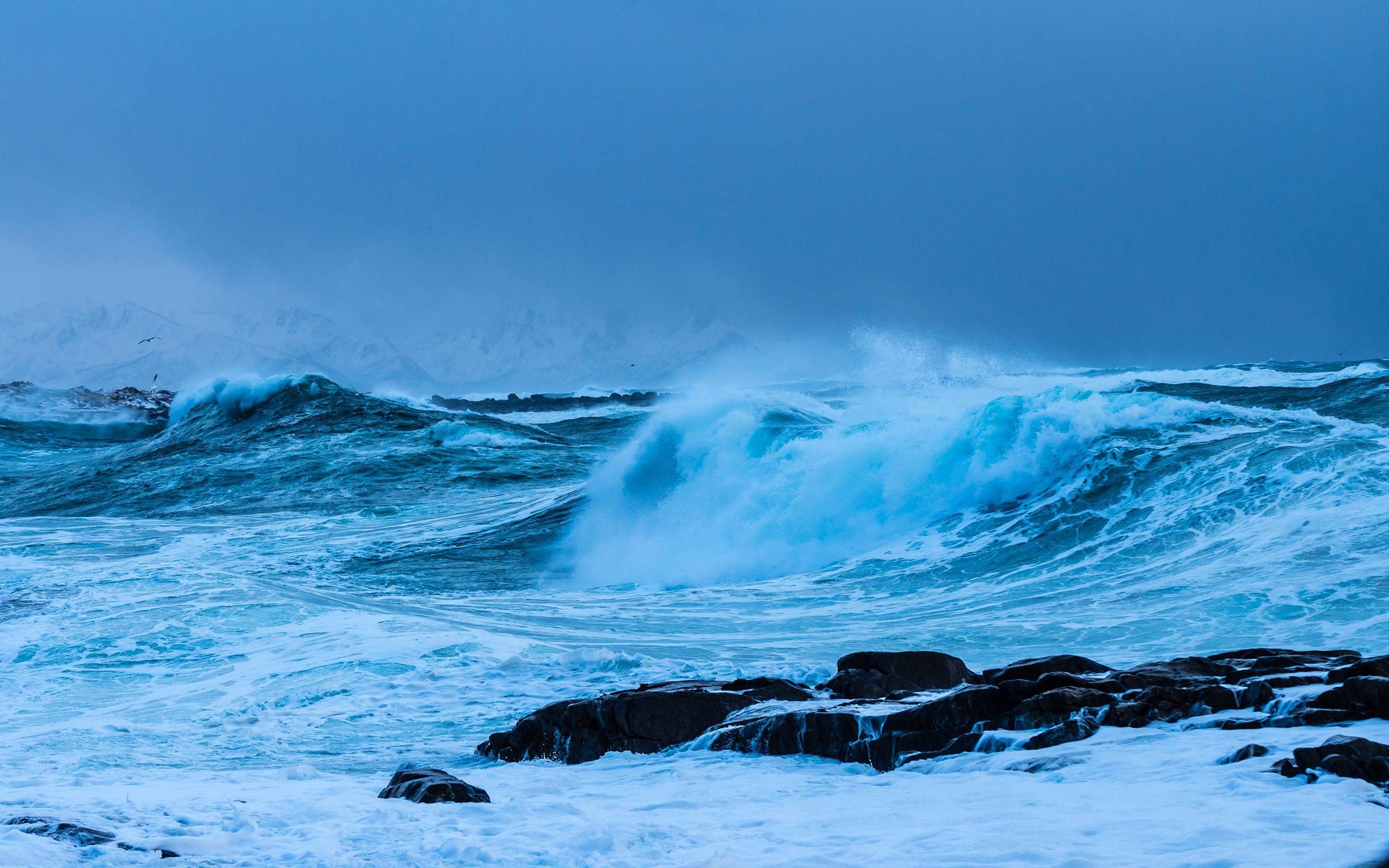 Sea Wallpaper 52 2560x1600