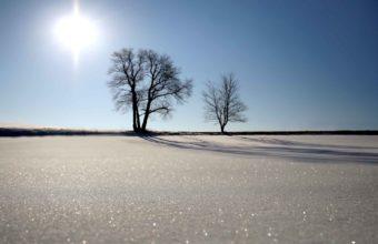 Shine Of Snow Wallpaper 1920x1440 340x220