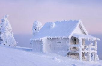 Snow Winter 4K Ultra HD Wallpaper 3840x2160 340x220