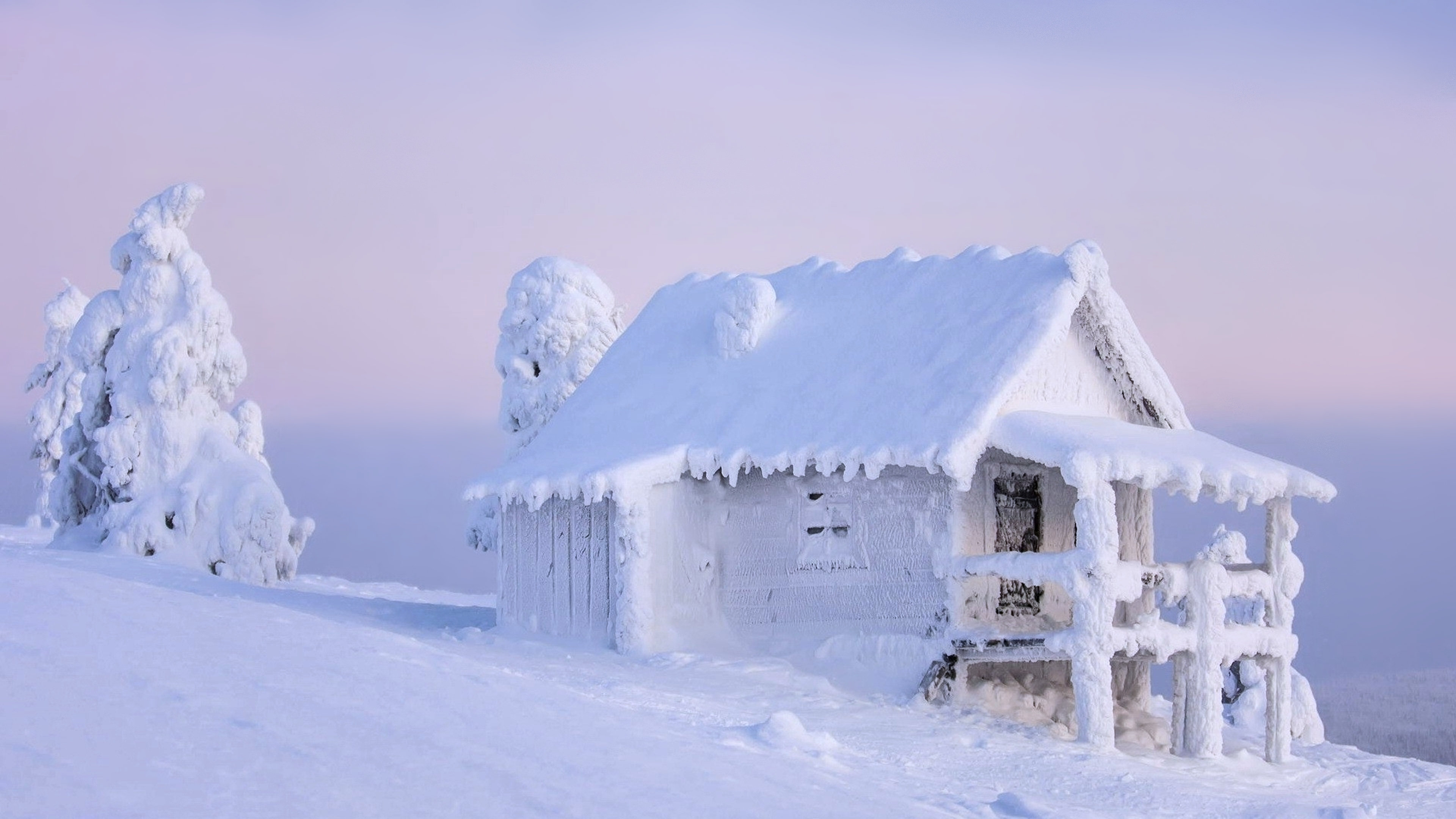 Snow Winter 4k Ultra Hd Wallpaper 3840x2160 340x220