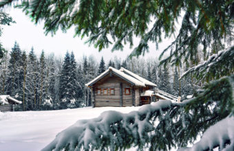 Snow Winter House Pine Needles Wallpaper 2560x1600 340x220