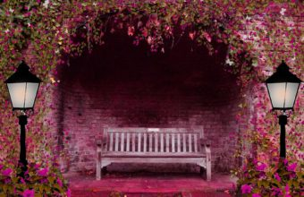 Spring Garden Flowers Arch Bench Lights Wallpaper 1920x1200 340x220