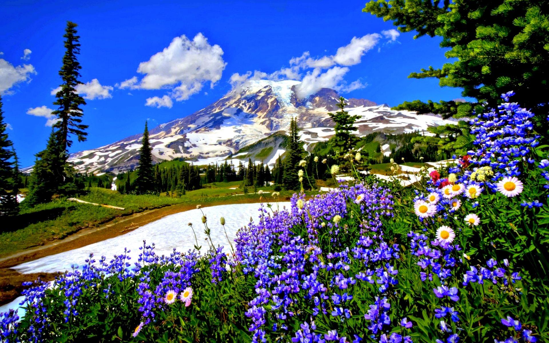 Great Wallpaper Mountain Spring - Spring-Mountains-Wallpaper-1920x1200  Graphic_491371.jpg