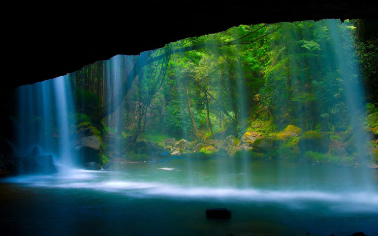 Trees Forest Waterfalls Water Pool Wallpaper 768x480