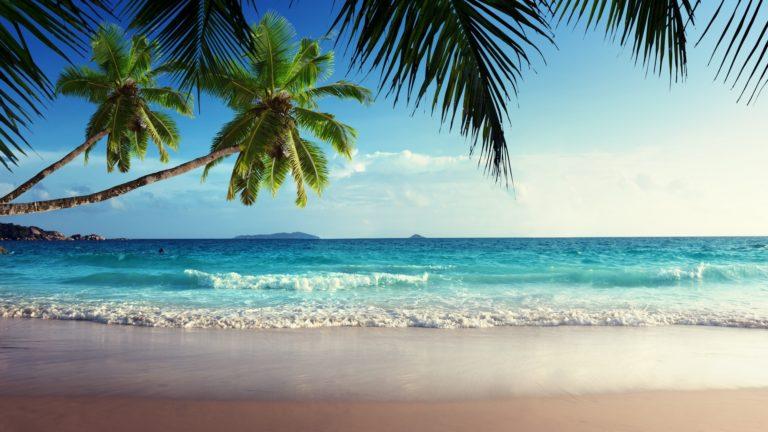Tropical 4K Ultra HD Wallpaper 3840x2160 768x432