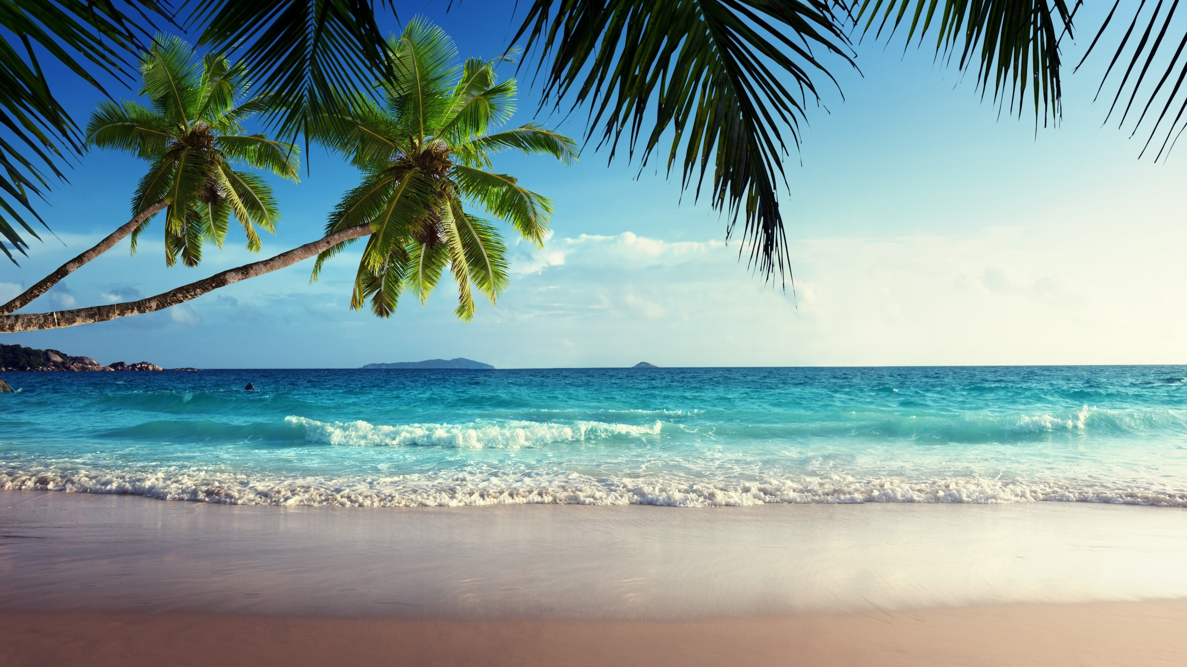 Tropical HD Wallpapers