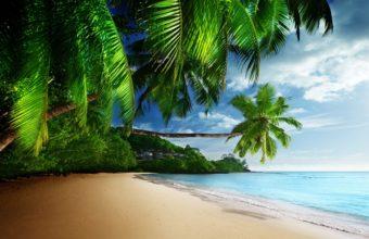 Tropical Beach 4K Ultra HD Wallpaper 3840x2160 340x220