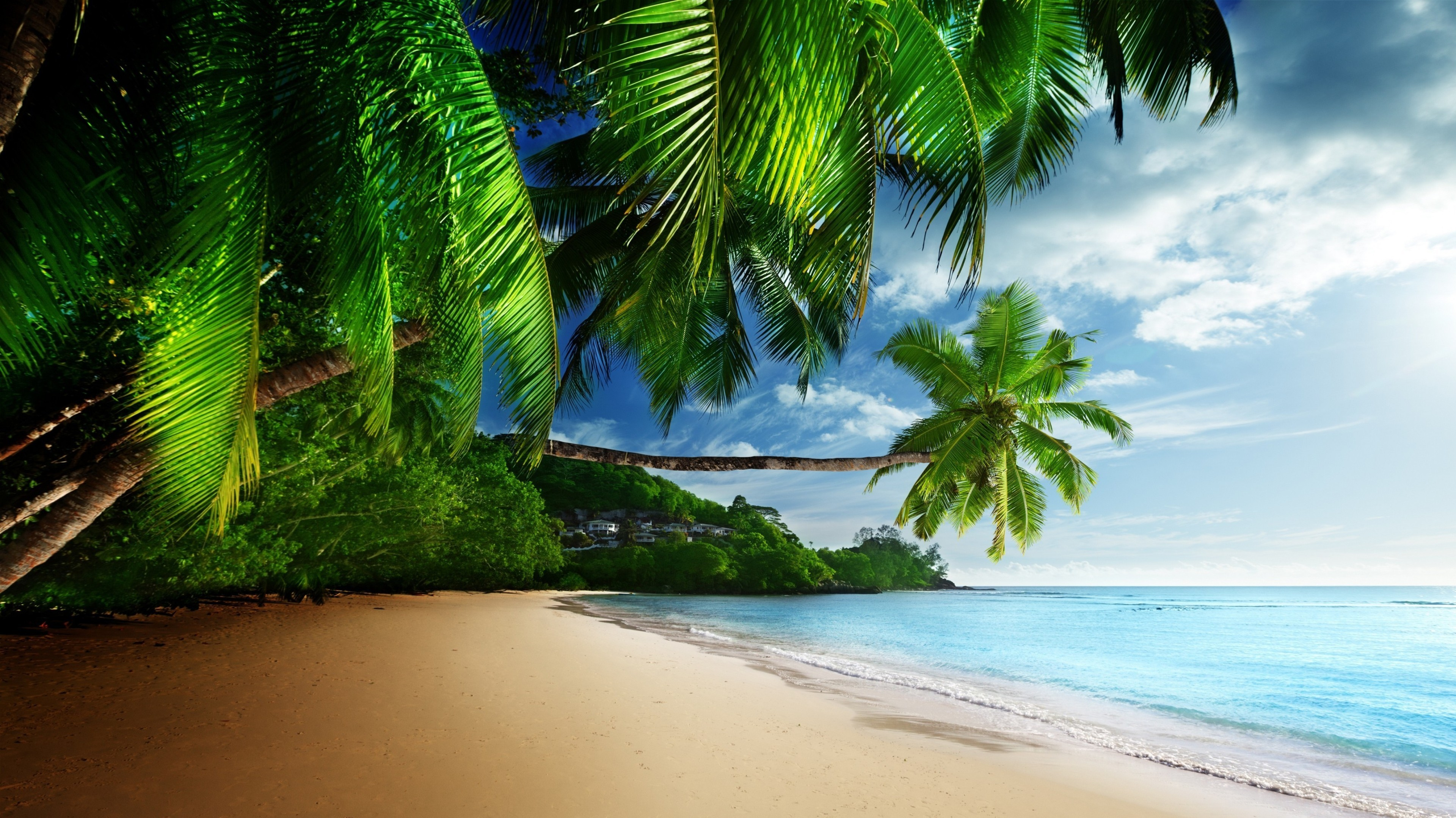 Tropical Beach 4K Ultra HD Wallpaper 3840x2160