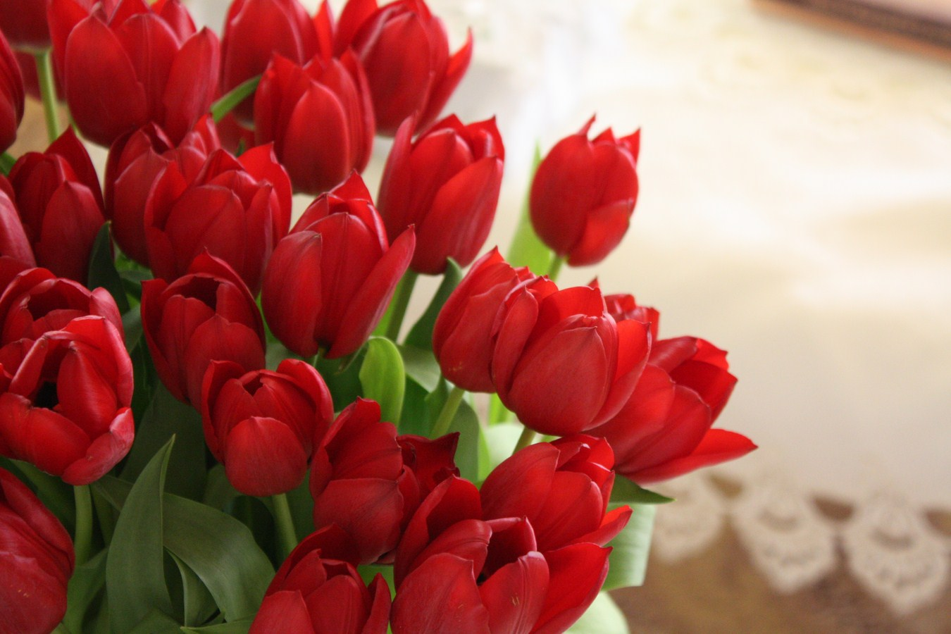 Tulip Flowers Bouquet Wallpaper 1350x900