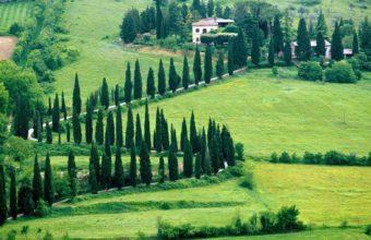 Tuscan Landscape Wallpaper 1920x1200 340x220