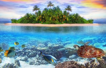 Underwater 4K Ultra HD Wallpaper 3840x2160 340x220