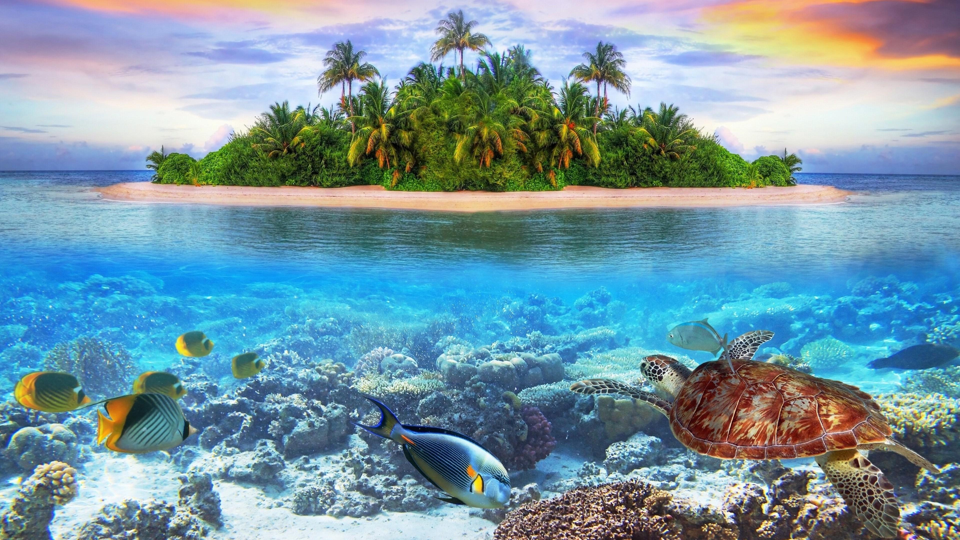 Underwater 4k Ultra Hd Wallpaper 3840x2160