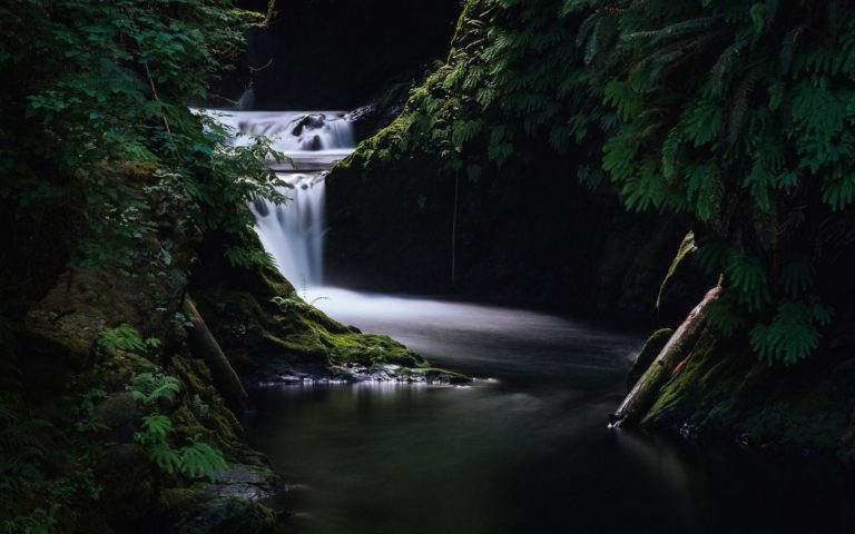 Waterfall Grass Dark Wallpaper 768x480