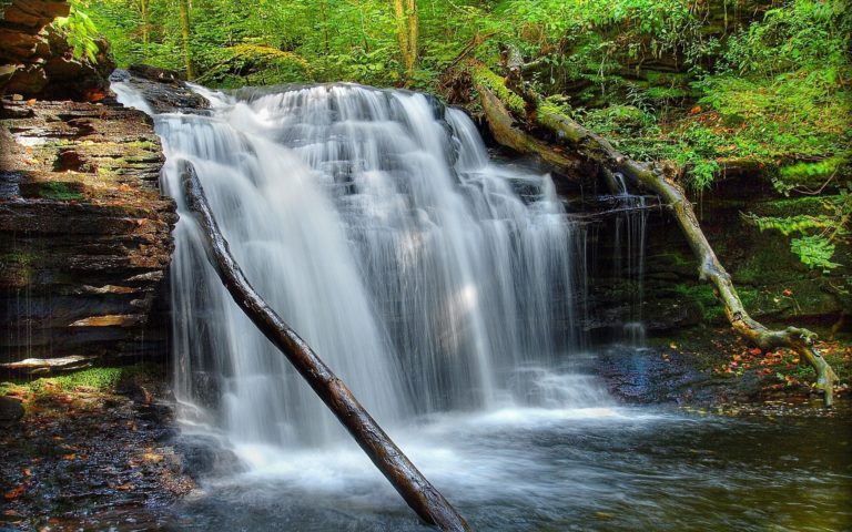 Waterfall Grass Moss Wallpaper 768x480
