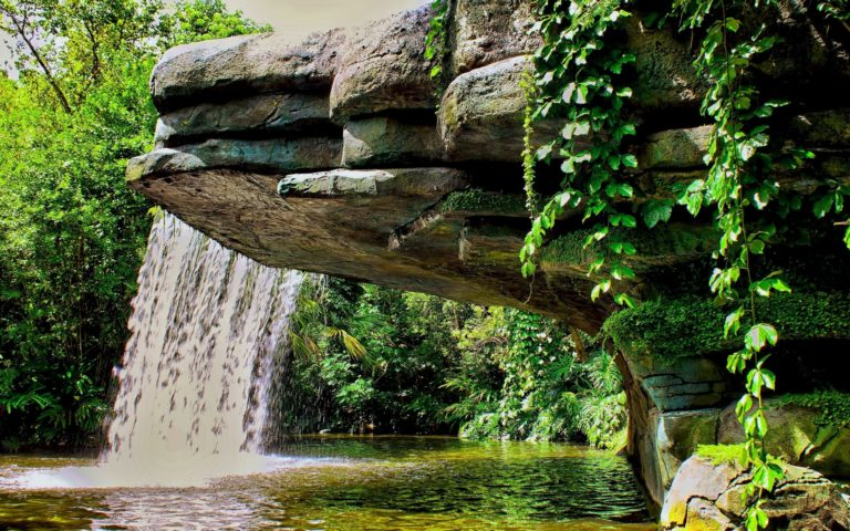 Waterfall Pond Vegetation Landscape Wallpaper 768x480