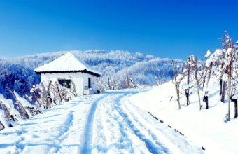 Winter House Road Wallpaper 1680x1050 340x220