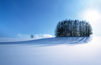Winter Scenery Wallpaper 1920x1080 340x220