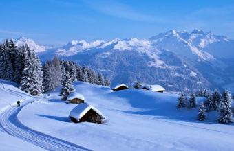 Winter Snow 4K Ultra HD Wallpaper 3840x2160 340x220