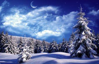 Winter Wallpaper 005 1920x1200 340x220