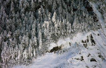 Winter Wallpaper 006 1600x1200 340x220