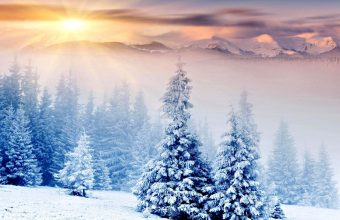 Winter Wallpaper 015 2560x1920 340x220