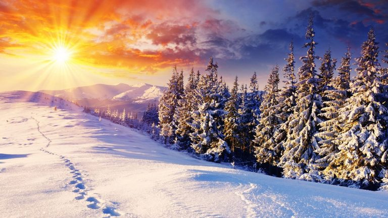 Winter Wallpaper 034 1920x1080 768x432