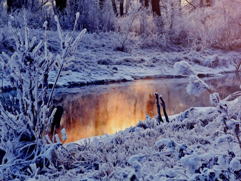 Winter Wallpaper 050 2560x1920 768x576