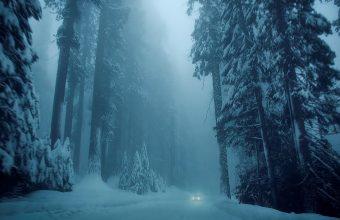 Winter Wallpaper 056 1920x1200 340x220