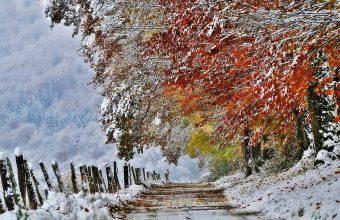 Winter Wallpaper 057 2048x1319 340x220