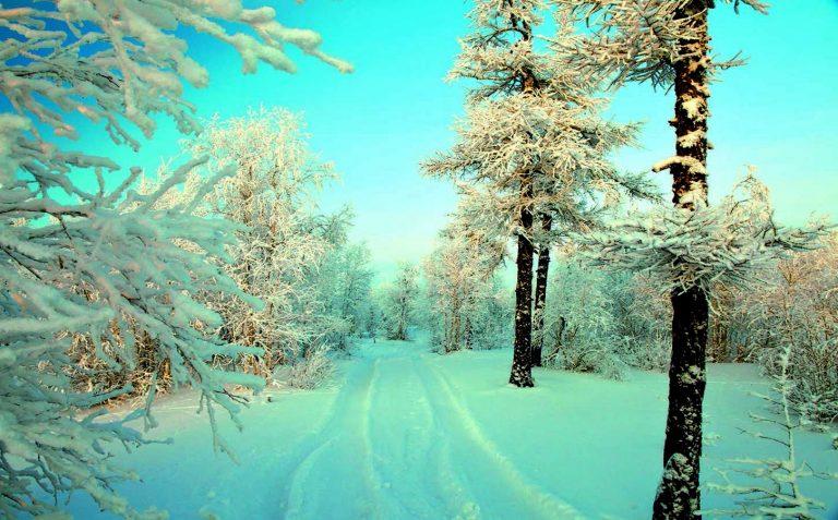 Winter Wallpaper 062 1450x900 768x477