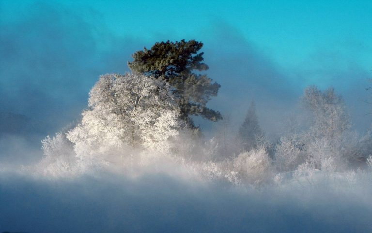 Winter Wallpaper 067 1680x1050 768x480