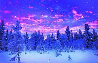 Winter Wallpaper 068 1920x1200 340x220