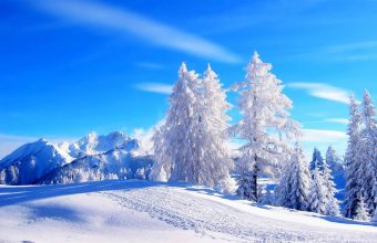 Winter Wallpaper 072 1920x1200 340x220