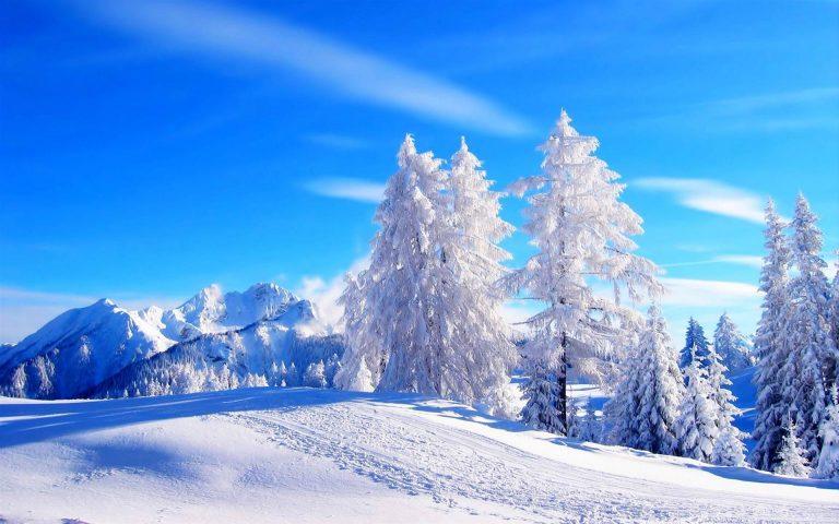 Winter Wallpaper 072 1920x1200 768x480