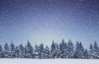 Winter Wallpaper 074 1920x1280 340x220