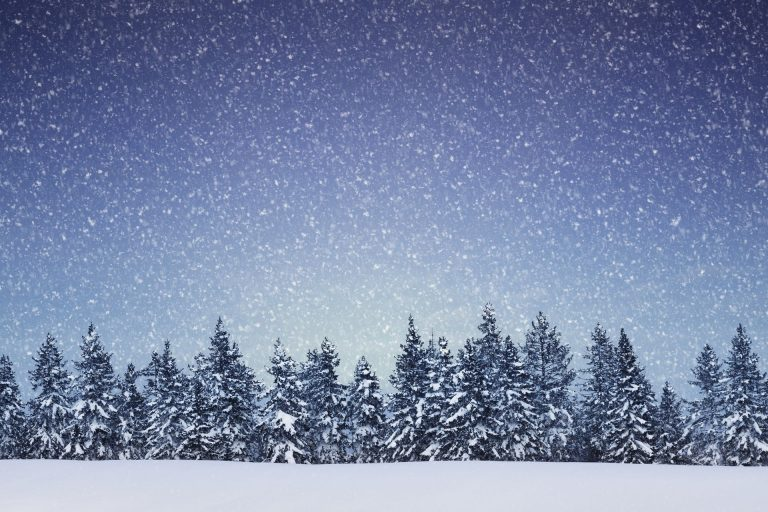 Winter Wallpaper 074 1920x1280 768x512