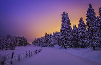 Winter Wallpaper 080 1920x1200 340x220