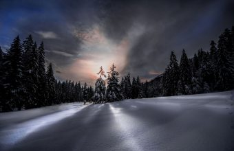 Winter Wallpaper 093 1920x1200 340x220