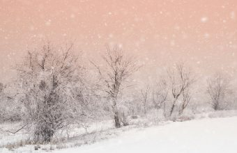 Winter Wallpaper 098 2048x1365 340x220
