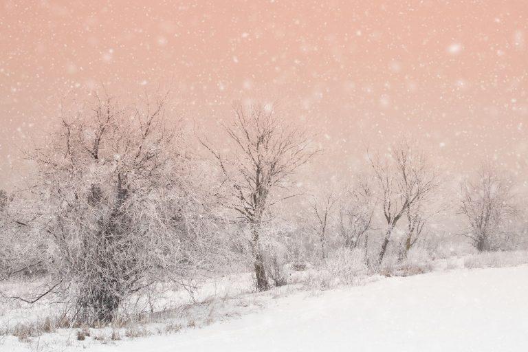 Winter Wallpaper 098 2048x1365 768x512