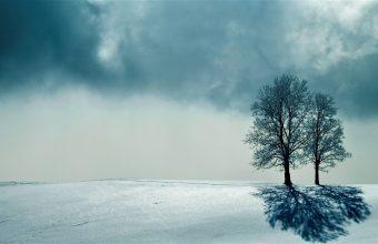 Winter Wallpaper 108 2560x1440 340x220