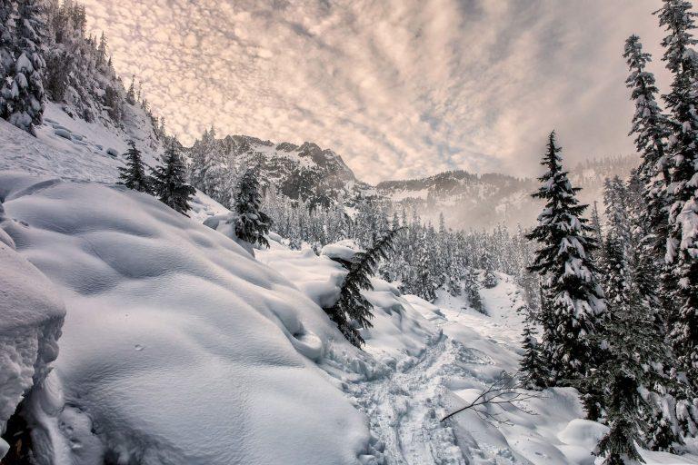 Winter Wallpaper 115 2048x1365 768x512