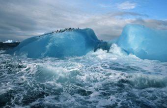 iceberg ice ocean sea waves birds 340x220