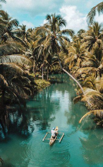Beautiful Jungle Lake Wallpaper 340x550