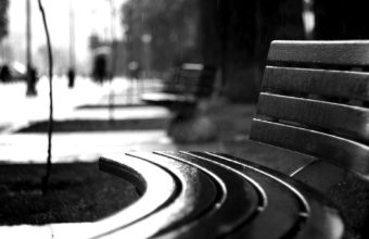 Bench Rain BW Black White Wallpaper 1920x1200 340x220