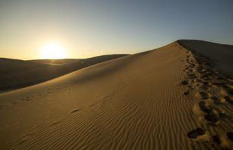 Desert Sunlight Sunset 340x220